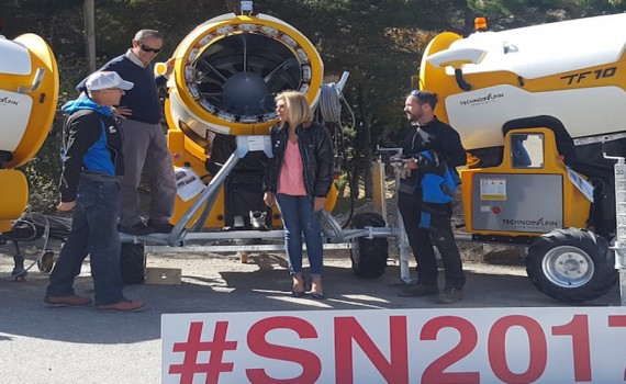 Cañones SN17